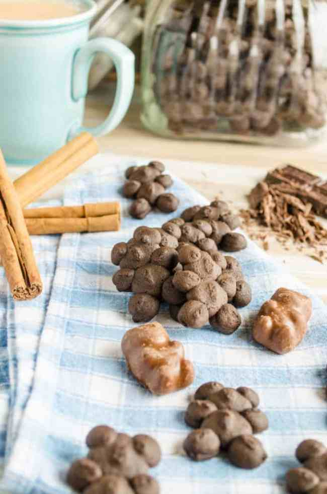 Chocolate Cinnamon Bear Cookies with Chocolate Cinnamon Bear Candies