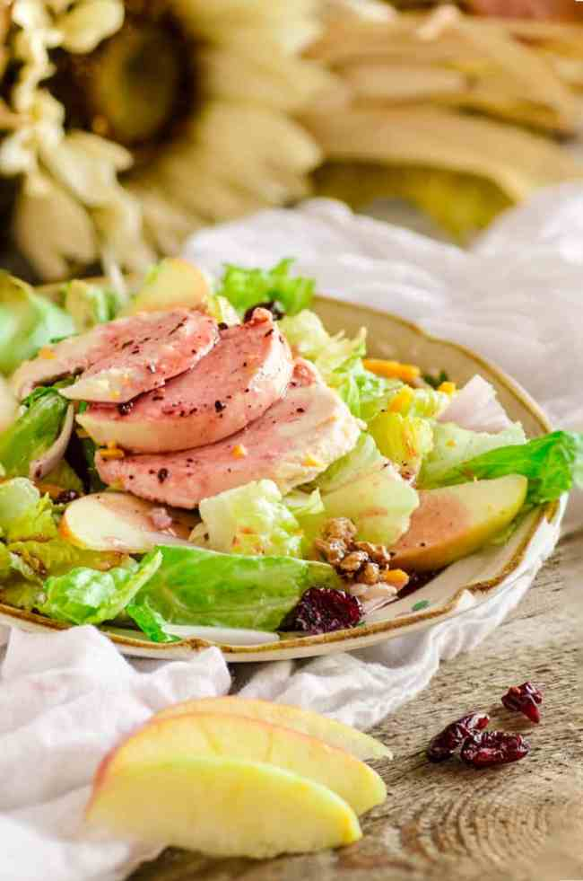 A serving of Chicken Apple Cheddar Salad on a small plate with cranberry vinaigrette drizzled over. - The Goldilocks Kitchen