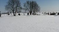 """Kilka ciepłych dni na początku lutego dało nadzieję na szybki koniec zimy. Ostatnie dni ją pogrzebały, oferując w zamian śnieg i mróz. Tak w tej chwili wygląda pole: <a href=""""https://i2.wp.com/golf-olszewka.pl/wp-content/uploads/2011/02/img_2709.jpg""""></a>"""