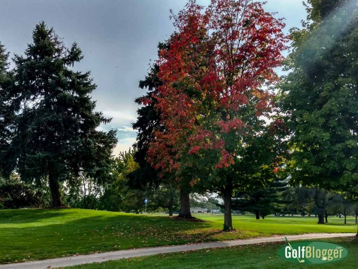 Leaves Changing At Green Oaks Golf Course