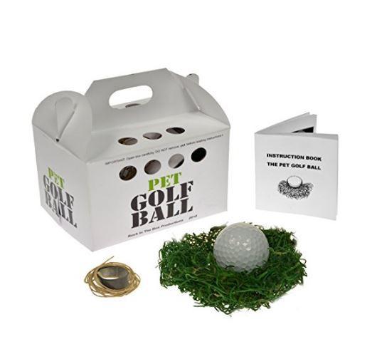 Pet Golf Ball