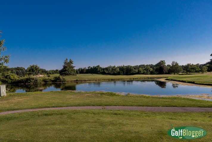 Downing Farms Golf Course For Sale