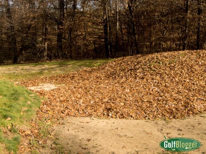The Leaf Bunker