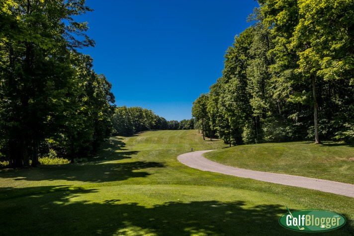 Chestnut Valley Golf Course Review the fourth hole