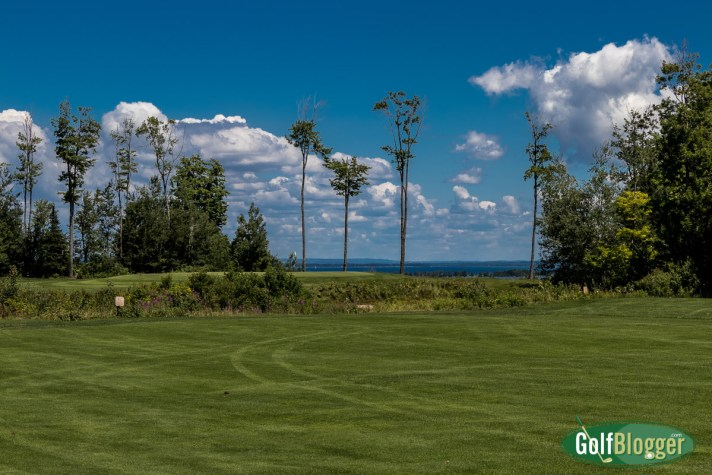 Wild Bluff Golf Course Review Wild Bluff, Brimley, Michigan Grade: B Teacher's Comments: A pleasant round. Well kept. The ninth