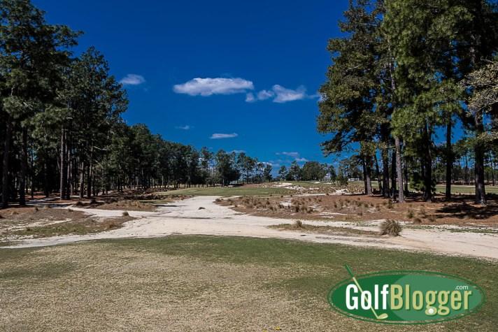 Pinehurst No. 2 Review twelfth hole