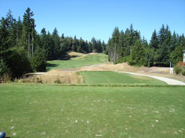 Lake Spanaway Golf Course     Golfchops tn 480 267282 234158183285263 109992229035193 802715 7617581 n  wh 13 1   wh 15 1