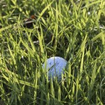 great golf tips that can benefit anyone - Big Ideas To Increase Your Golf Skills