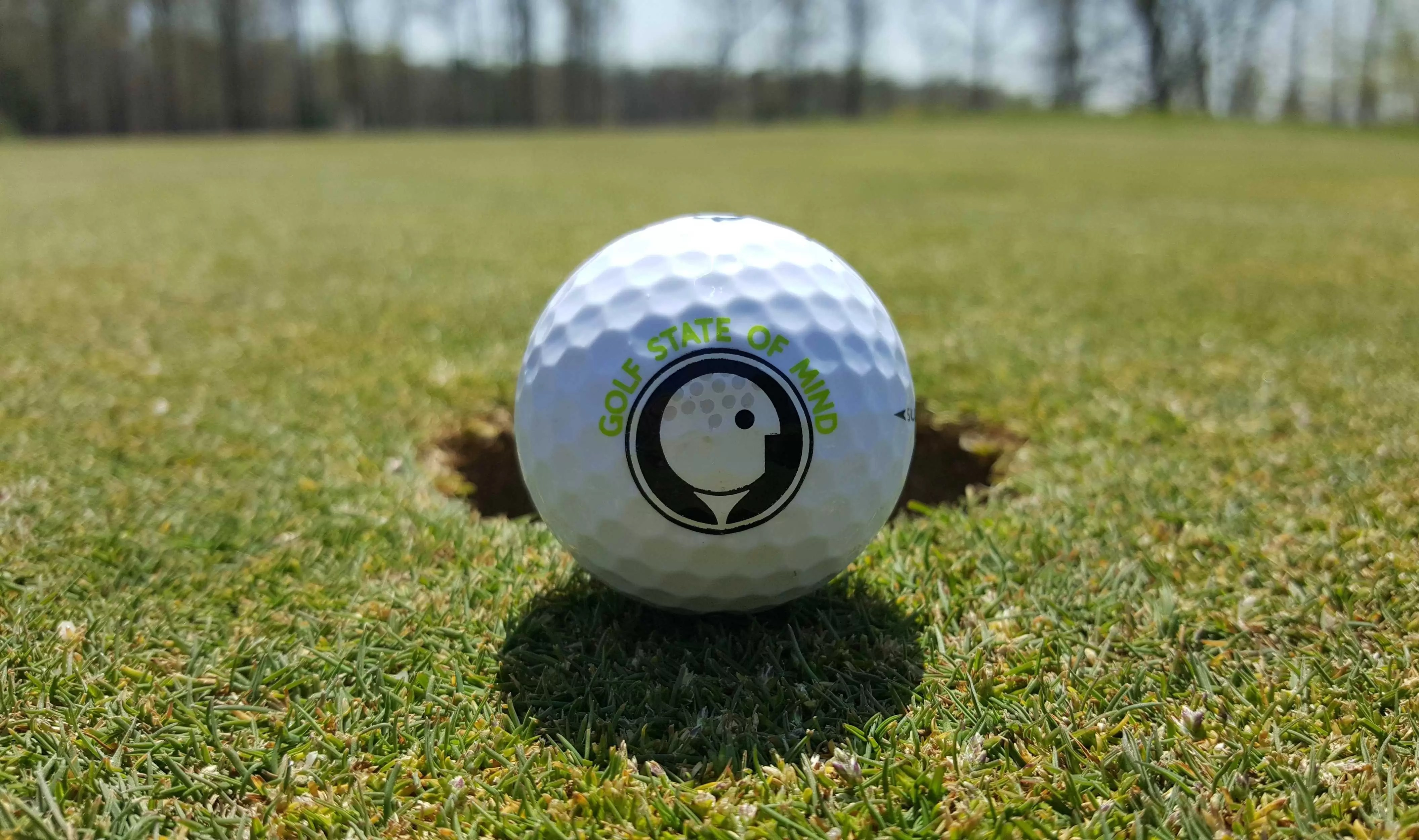Year End Evaluation And Goal Setting For Golf Worksheet