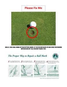 fix ball marks