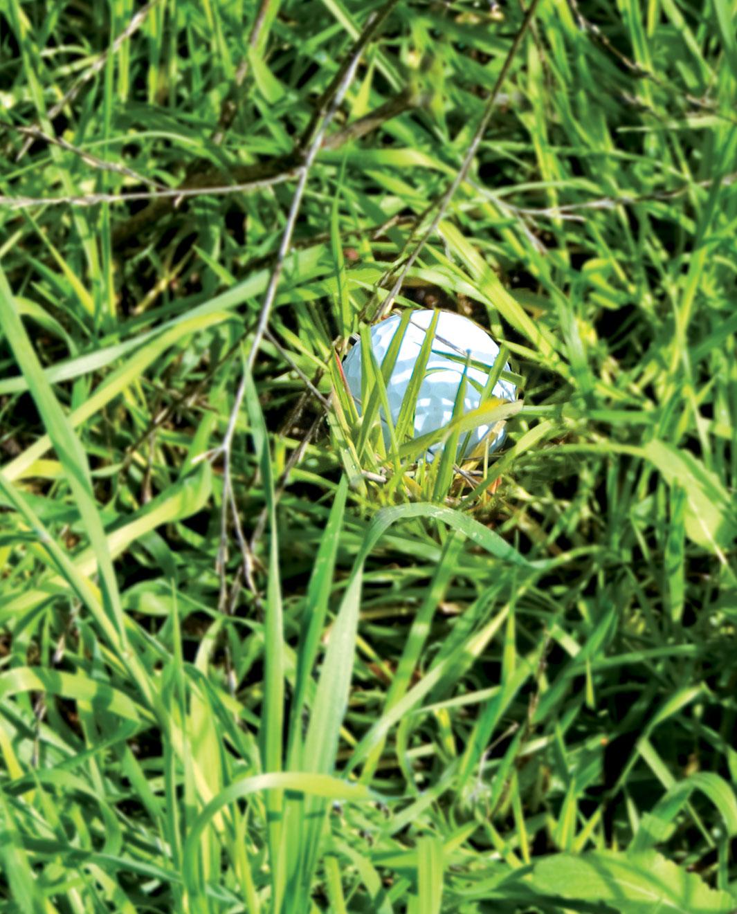 ball in tall grass