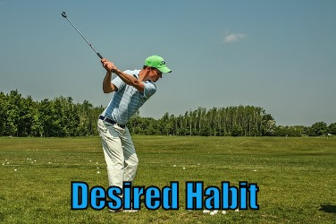 desired habit