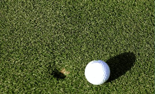 golfdivot 2