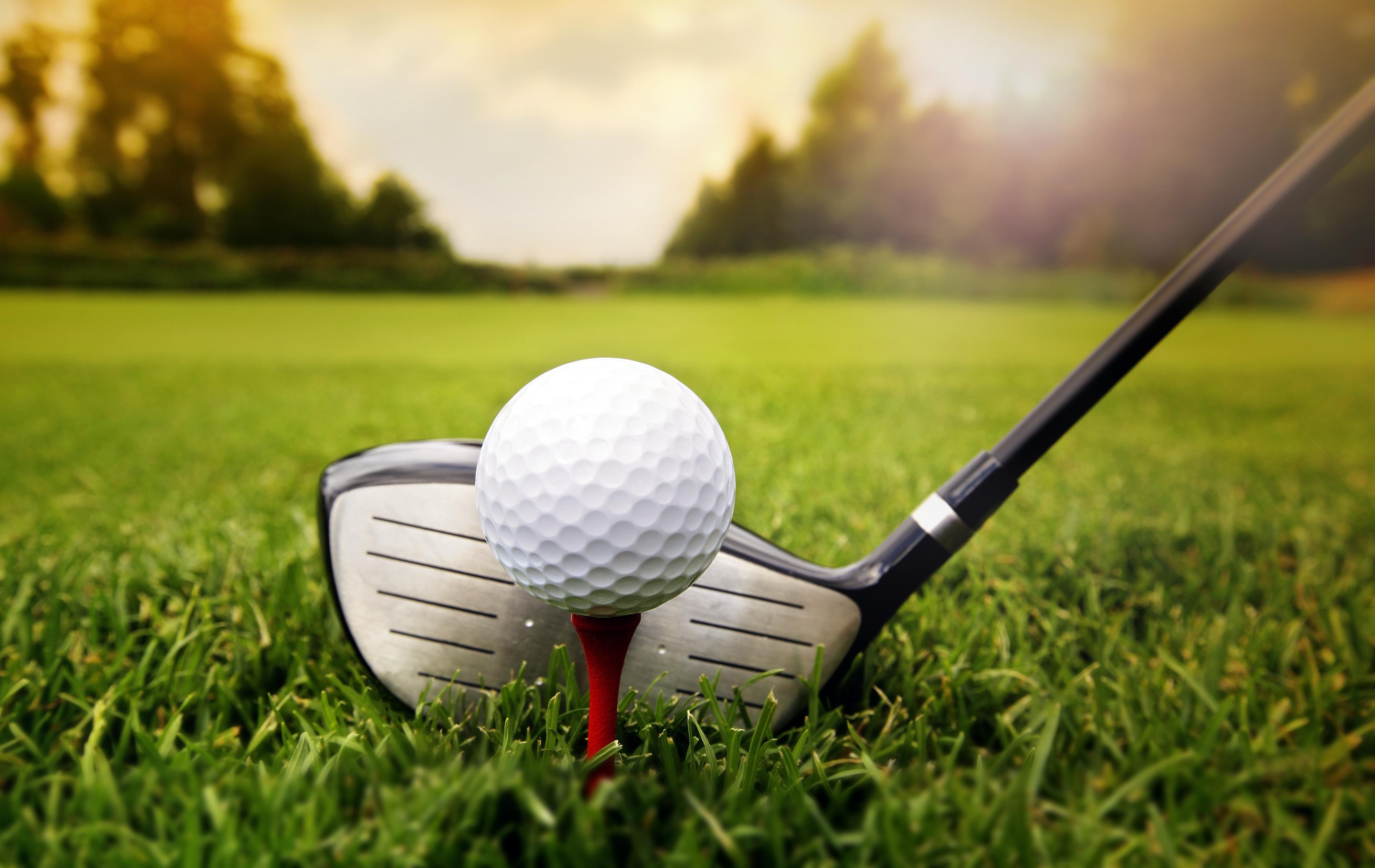 31st Annual Dr. D.R. Davis Golf Classic