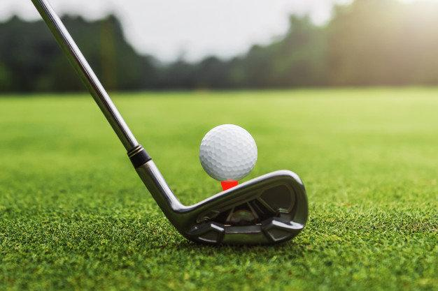 17th Annual AIPG Michigan Section Golf Outing