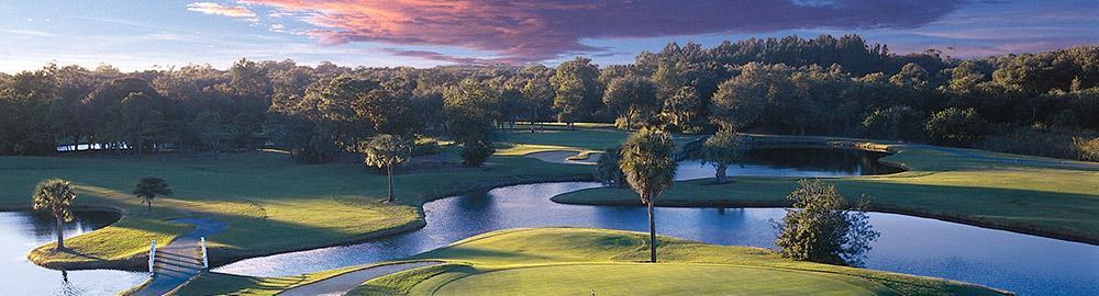 vTECH io and Dell Golf Tournament