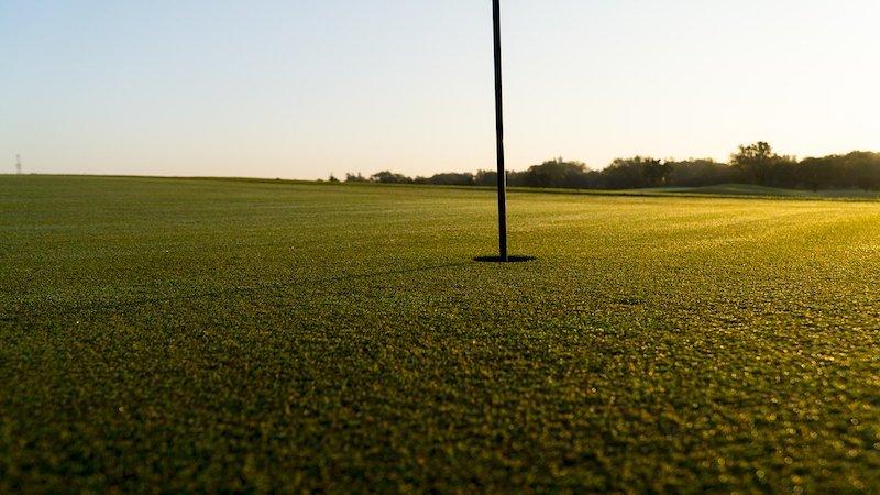 Nyklippt golfgreen i solen