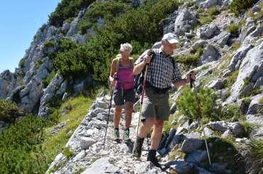 rhine-hikes