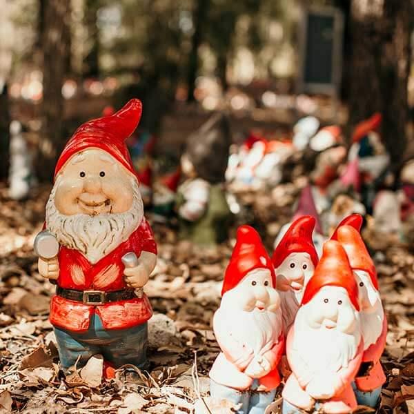 Gnomesville, Australia. Photo by Tessa Eckersley, Cabin Creative