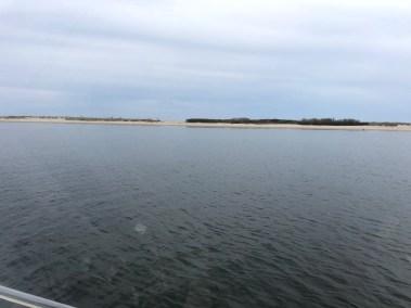 Favorite summer anchoring spot
