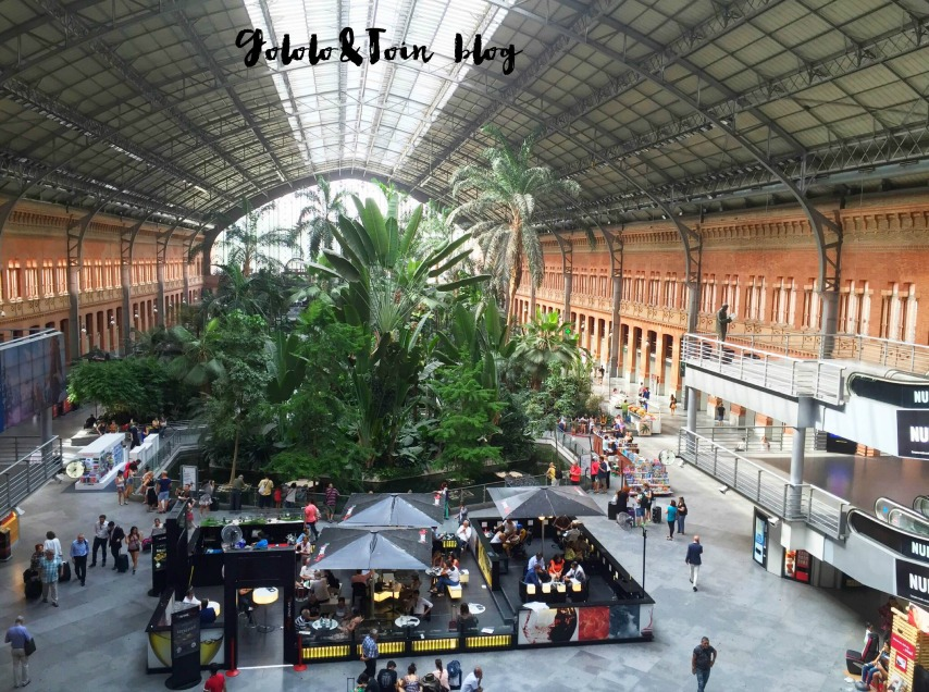 jardín-tropical-madrid-atocha-estacion-tren-niños-visitas-culturales