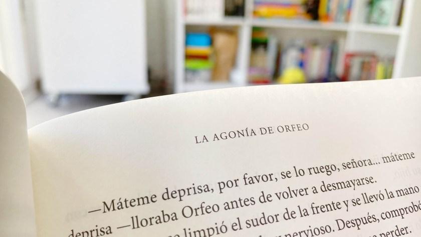 Bosque, editorial Obscura