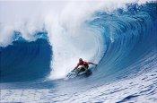 Surf up!