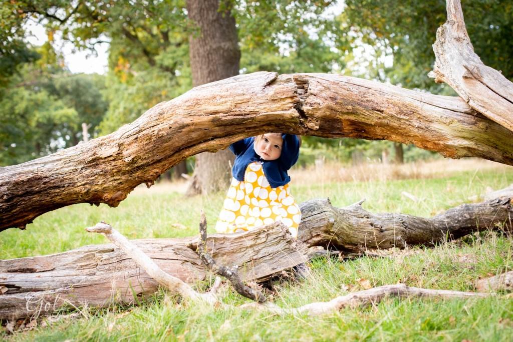 2 years ol autum family photoshoot in richmond