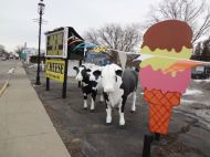 Cows and ice cream next to the sign = perfection