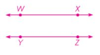grade 4 chapter 10 Lines, Rays, and Angles image 2 565