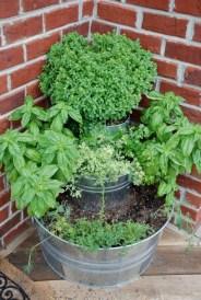 fűszernövények bádogedényben