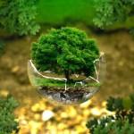 Dopad lidského faktoru na planetu