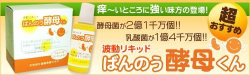 20110115-banner01.jpg