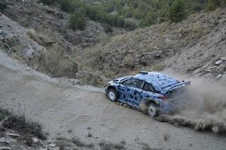 HyundaiWRC17