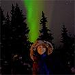 gondwana ecotours travel  alaskan northern lights review