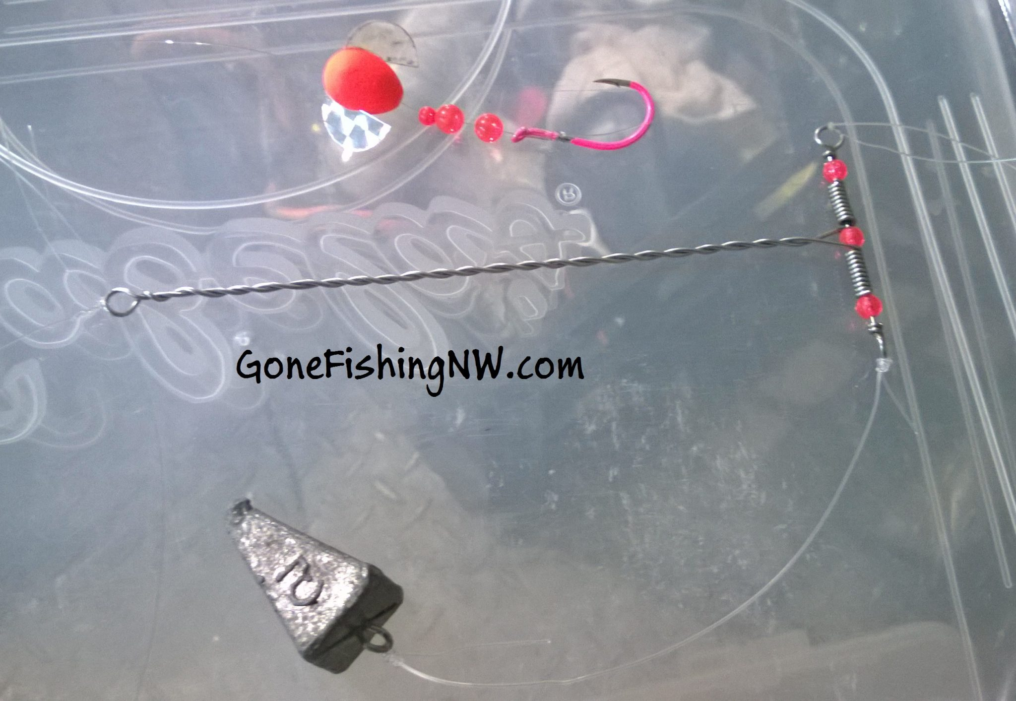 Pink salmon fishing basics plunking gone fishing nw for Salmon fishing setup