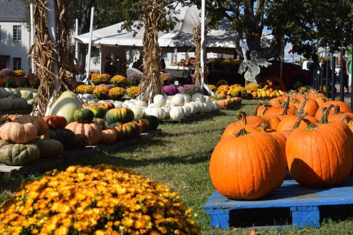 Pumpkin market Nashville