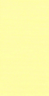 River Silk Ribbon Yellow 05 4mm