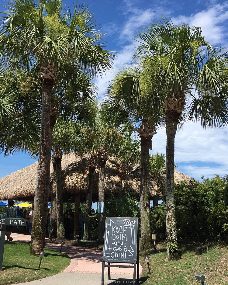 Swaying palm trees and thatched huts by the Atlantic ocean