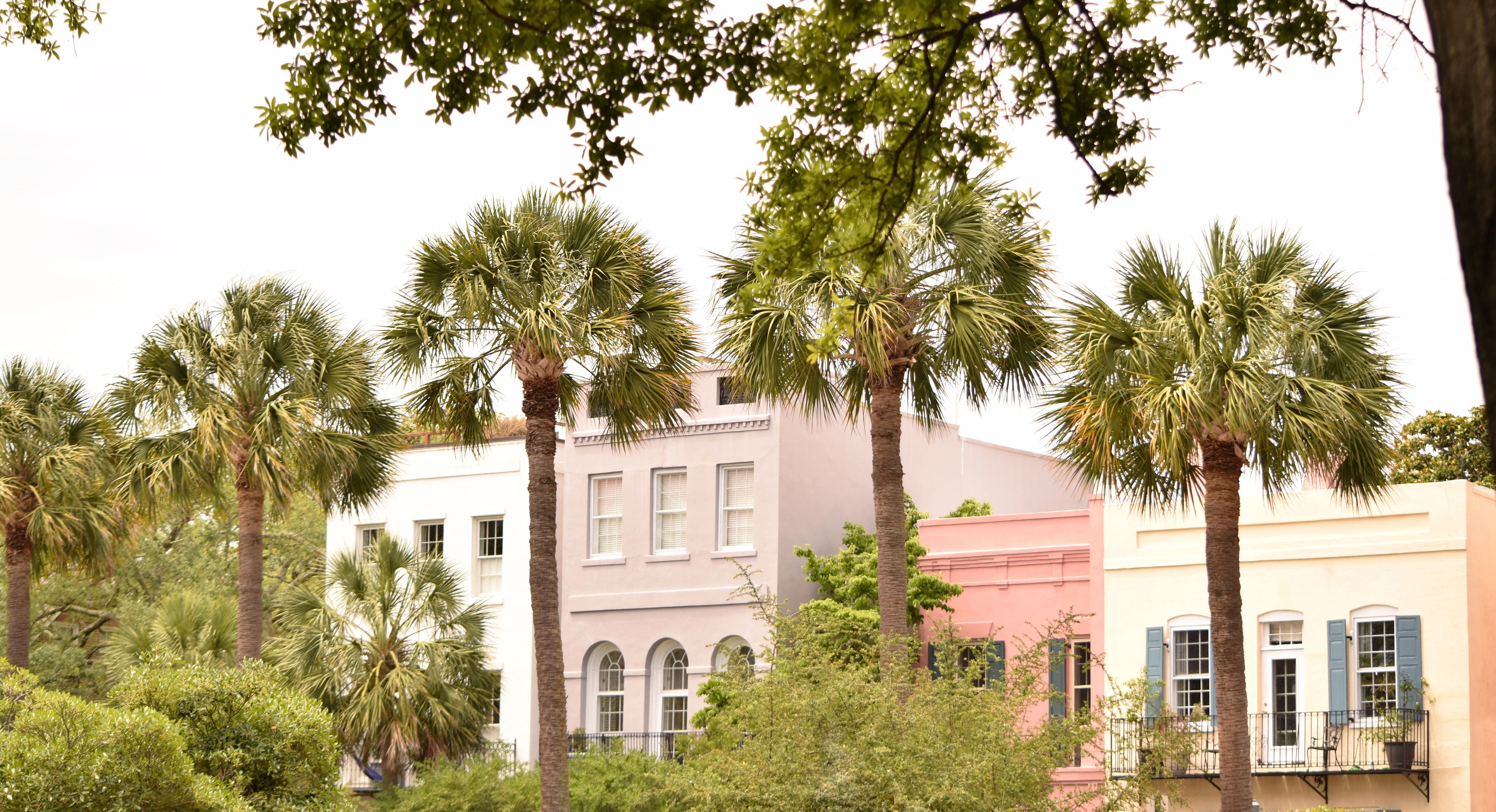 Family Travel Guide: Charleston, South Carolina