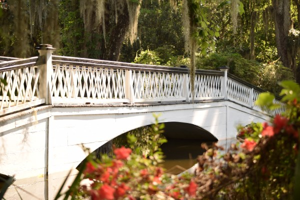A Day at Magnolia Plantation and Gardens With Kids
