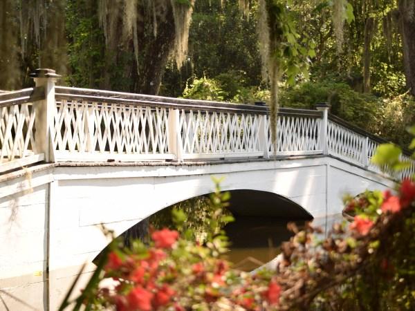 Travel Diary: A Day at Magnolia Plantation and Gardens
