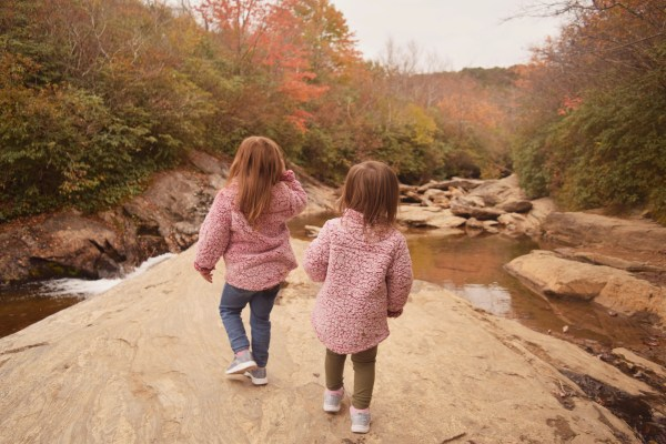 Travel Diary: The Blue Ridge Parkway & Graveyard Fields With Kids