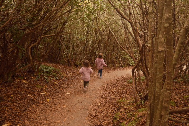 my daughters running on the path to the waterfall
