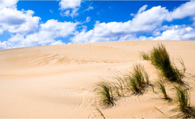 sand dunes in kill devil hills