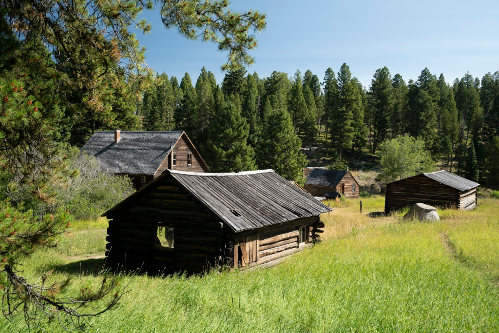 wood cabins in the forest