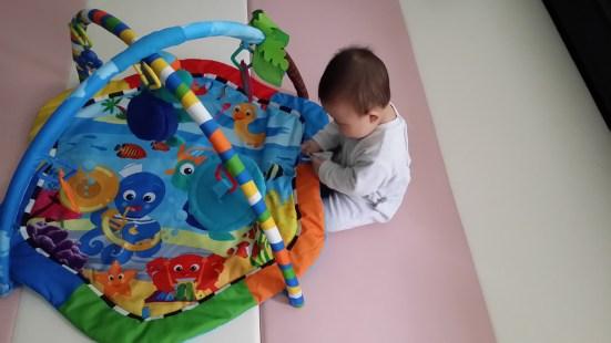 Baby Developmental Milestones Sitting Up