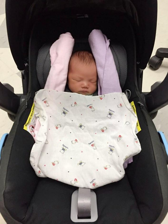 UPPAbaby Infant Car Seat Mesa