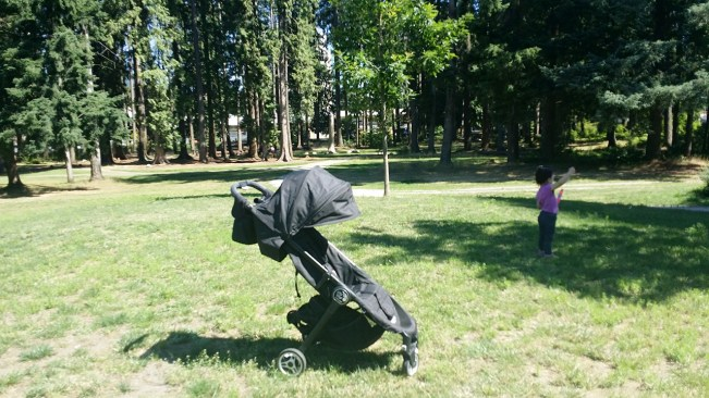 Baby Jogger City Tour Review - City Tour Stroller On Grass