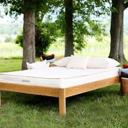 Non Toxic Mattress - Savvyrest Natural Latex Mattress Tranquility